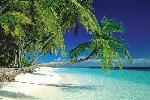 Poster d'une plage au Maldives