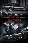 Poster Ford Shelby GT 500
