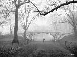 Photo de Henri Silberman Gothic Bridge, Central Park