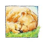 Affiche de Makiko Mother Bear's Love II