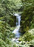 Photo murale d'une Forêt avec cascade (4 panneaux à coller)