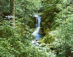 Photo murale d'une cascade en forêt (8 panneaux à coller)