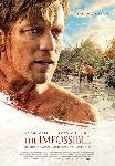 Poster du film The Impossible
