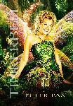 Poster du film Peter Pan