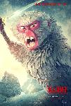 Poster du Manga Kubo et l'armure Magique - Monkey