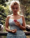 Affiche de Marilyn Monroe