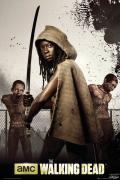 Poster de la série tv The Walking Dean Michonne