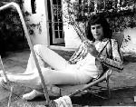 Photo de Freddie Mercury