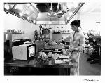 Photo noir & blanc du film Shining