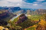 Photo paysage foret en Afrique du Sud
