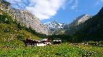 Photo ferme en montagne Alpes Autriche