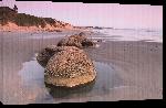 Toiles imprimées Affiche de la plage de Nouvelle Zélande