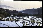 Toiles imprimées Affiche rizière de Chine