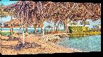 Toiles imprimées Photo plage Bahrein