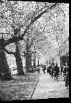 Toiles imprimées Photo noir et blanc vélo sur les quai d'Amsterdam