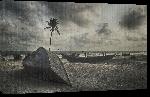 Toiles imprimées Photo bateau plage Bangladesh