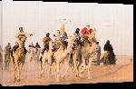 Toiles imprimées Photo course chameau en Algérie