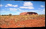 Toiles imprimées Photo ayers rock dans le désert Australien