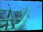 Toiles imprimées Photo épave dans l'océan au Bahamas