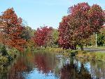 Photo paysage automnal sur lac