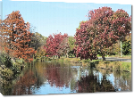 Toiles imprimées Photo paysage automnal sur lac