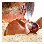 Poster photo Hélice sur le sable