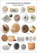 Affiche de Atelier Nouvelles Images Fromages de brebis