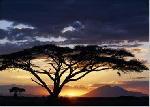 Photo de Joff LEE Coucher de soleil Kenya