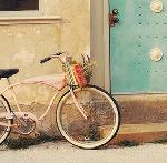 Poster de Mandy LYNNE Vintage pink bike
