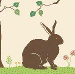 Affiche de SAPNA My little bunny