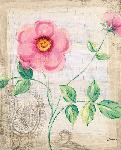 Affiche d'art de SAPNA Garden delight