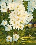 Affiche d'art de J.CHARLES Summer daisies