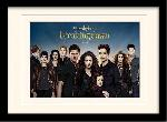 Photos encadrées Twilight breaking dawn (cast)
