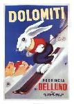 Affiche publicitaire de SABI Dolomites