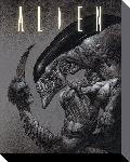 Toiles imprimées Alien - head on tail 40x50