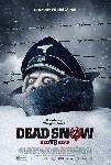 Affiche du film Dead Snow 2