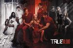 Poster True Blood - Show Your True Colours