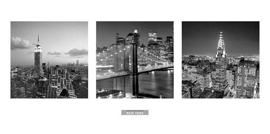 photo noir et blanc de henri silberman views of new york i