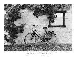 Affiche noir et blanc de Monte Nagler La Bicyclette