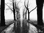 Poster noir & blanc de Larry Silver Jogger