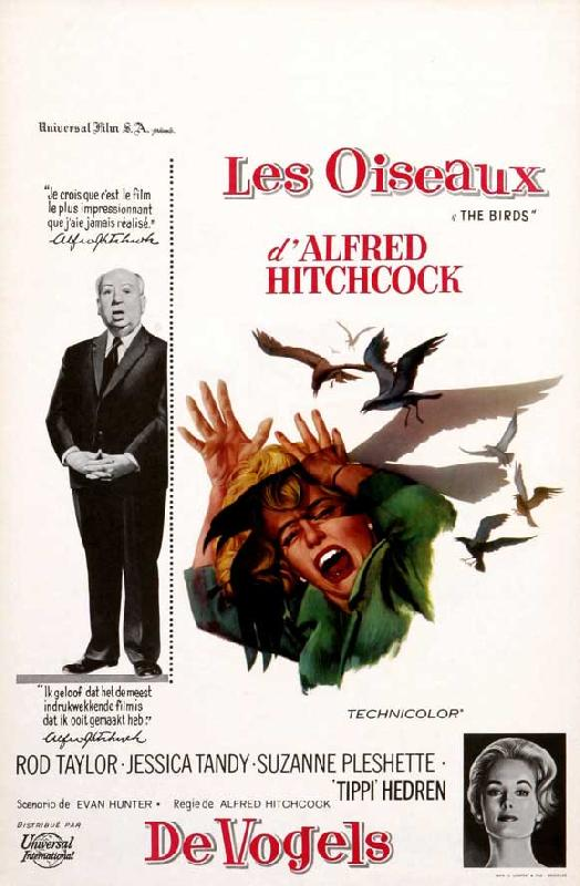 affiche du film les oiseaux d 39 alfred hitchcock acheter affiche du film les oiseaux d 39 alfred. Black Bedroom Furniture Sets. Home Design Ideas