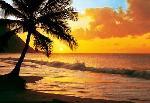 photo murale d'un coucher de soleil sur la plage (8 panneaux à coller)