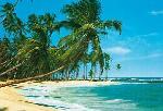 Photo murale d'une plage sur une ile (8 panneaux à coller)