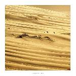 Affiche La Dune du Pilat - Bassin d'Arcachon