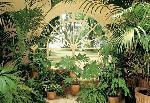 Photo murale d'un jardin d'intérieur (8 panneaux à coller)