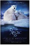 Affiche du documentaire Arctique