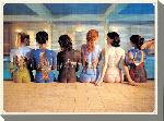Toile imprimée de Pink Floyd Back Catalogue