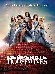 Affiche de la série TV Desperate Housewives (blue)