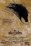 Affiche du film L'Etalon Noir