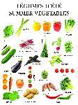 Affiche Légumes d'été
